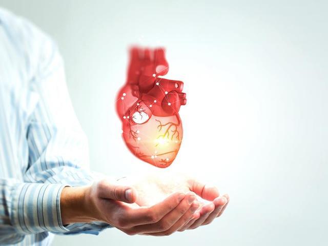 a magas vérnyomás szív- és érrendszeri betegség vagy keringési rendellenesség)