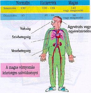 magas vérnyomás vesebetegségben