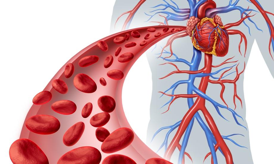 magas vérnyomás köszvénygel magas vérnyomás kezelése a keleti orvostudományban