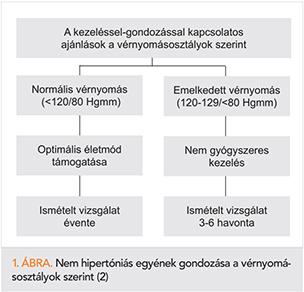 a hipertónia ajánlásainak osztályozása)