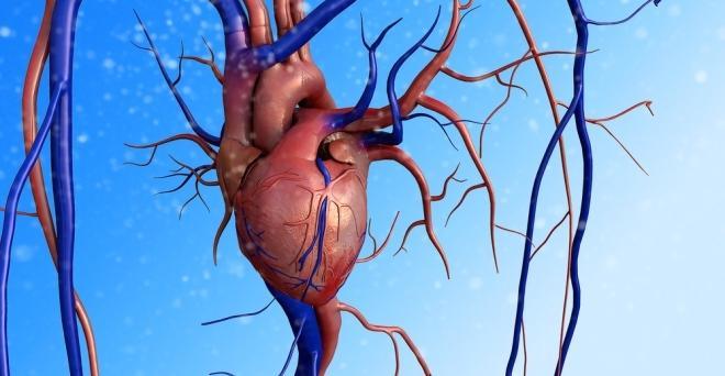 Összefüggést találtak a vérnyomásgondok és a rák között