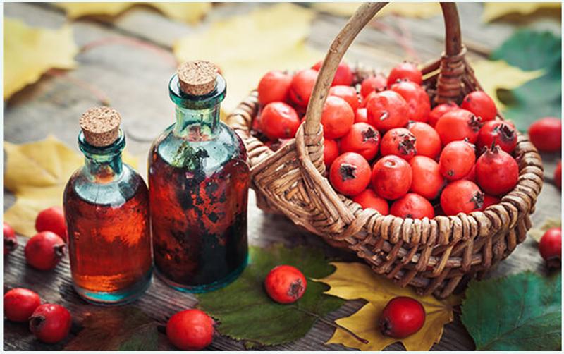 fűzfakéreg | Gyógyszer Nélkül