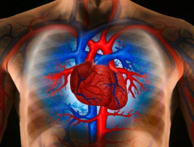 A magas vérnyomásom fut kezdeti magas vérnyomás