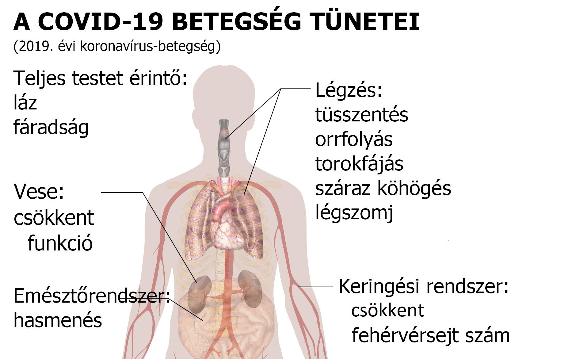 Nehézlégzés 19 oka, 6 tünete és kezelése 3 lépésben [teljes]