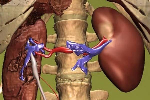 Szimpatika – A vérnyomás gyógyszer nélkül is csökkenthető