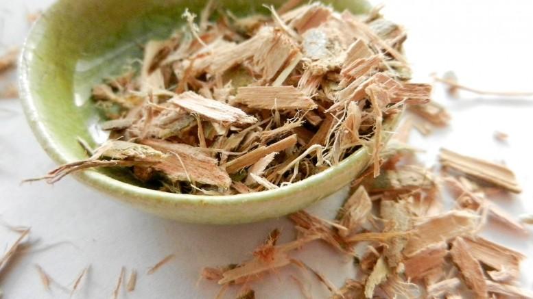 Fűzfa, a természet aszpirinje | Gyógyszer Nélkül