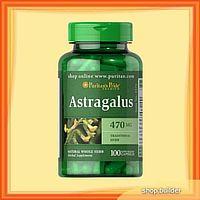 ASTRAGALUS, az életerő forrása