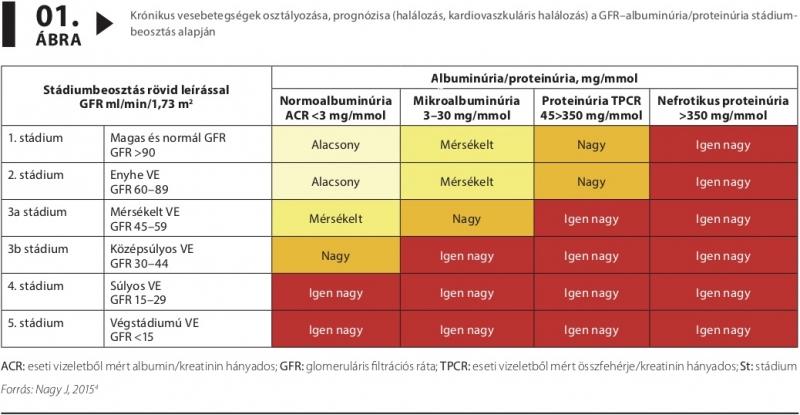 magas vérnyomás krónikus veseelégtelenség kezelésével)