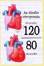 magas vérnyomás füzetek