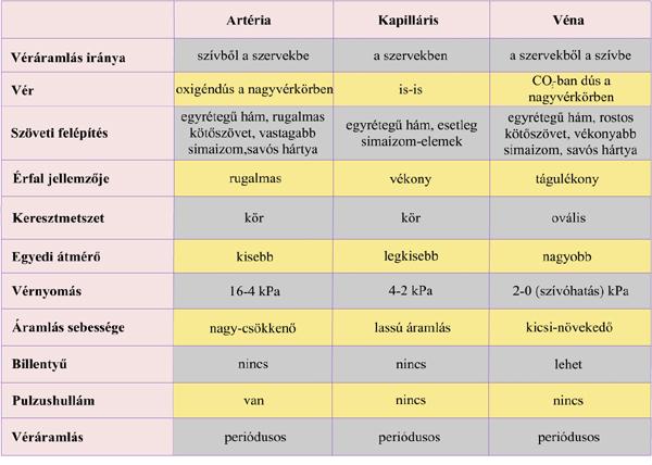 ha vastag vér és magas vérnyomás)