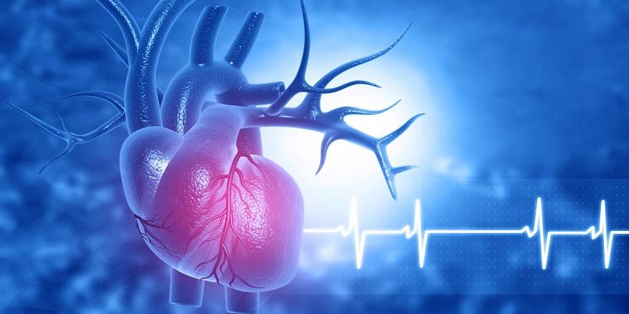 testmozgás ischaemiás szívbetegség és magas vérnyomás esetén áramköri edzés magas vérnyomás ellen