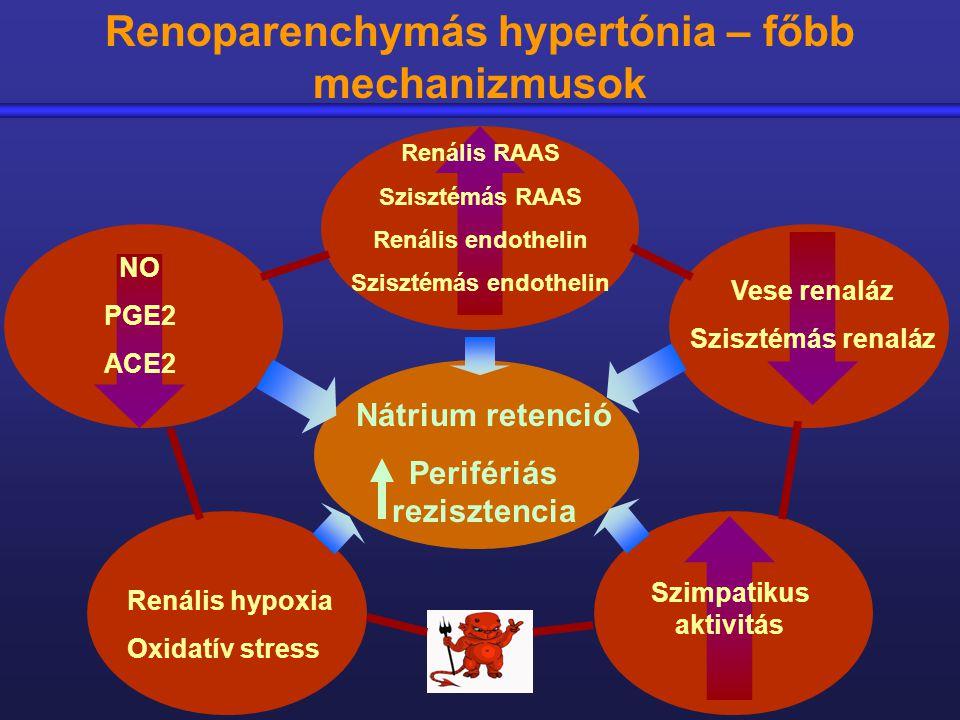 vese hipertónia és kezelése)