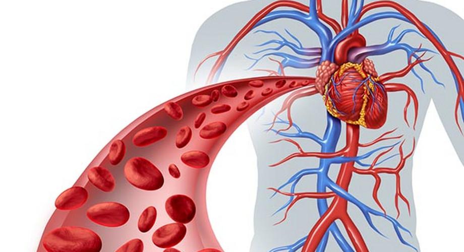 Gyenge vérkeringés: ekkor érdemes kivizsgáltatni